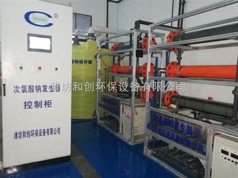 湖北地区次氯酸钠发生器厂家/饮水消毒设备