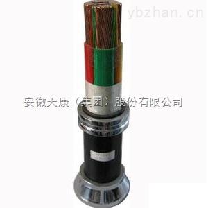 康泰YJV动力电缆 YJLV22 YVV仪表用电缆