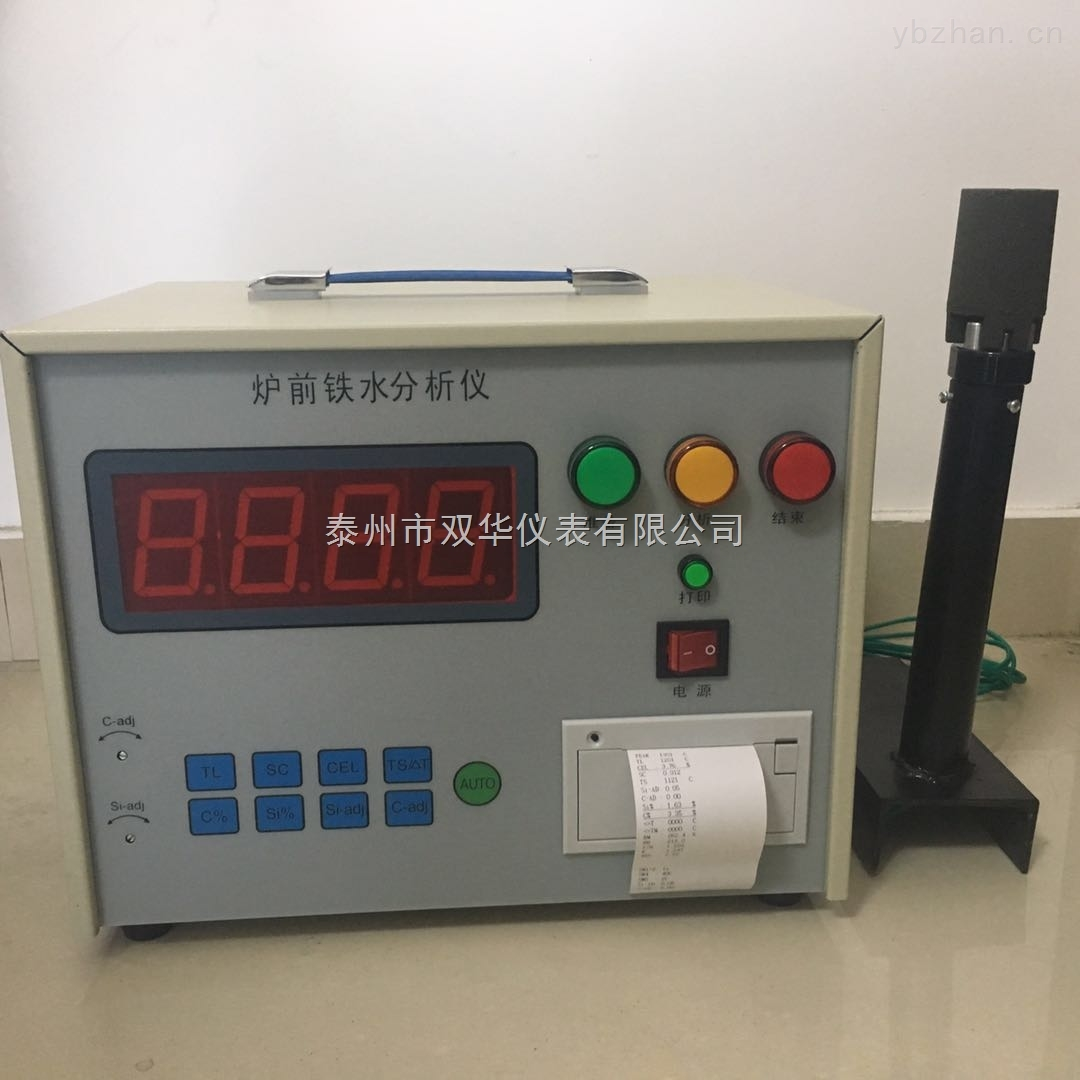 泰州双华仪表铁水分析仪