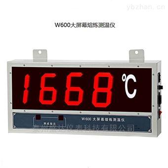 W600熔炼大屏幕有线钢水测温仪数显式
