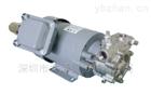 IWAYADENKI巖谷電機32NQCT6075給水泵報價