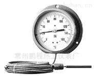 全不銹鋼液體壓力式溫度計
