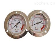 YN-60BF/Z轴向无边压力表