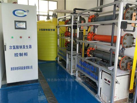 山西吕梁污水处理消毒设备/次氯酸钠发生器