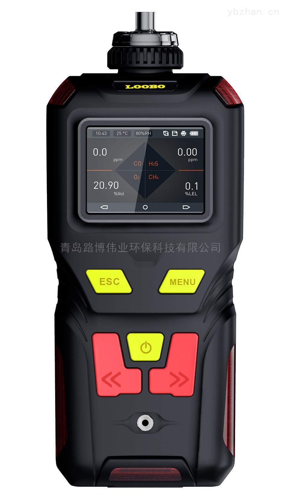 LB-MS5X泵吸便攜式氨氣分析儀NH3氣體檢測儀