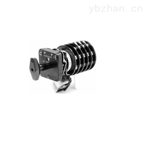 Series 31LSR/93-03-D-B闭锁开关继电器