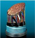钢带铠装通信电缆HYAT23 30*2*1.0