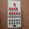 乾荣电动操作机构防爆动力配电箱