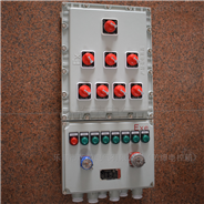 控制电机防爆配电启动箱 电控箱