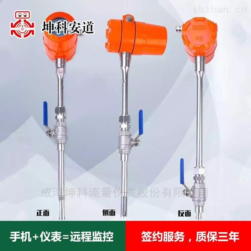 天然氣插入式熱式氣體質量流量計