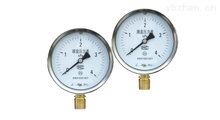 YE-100-膜盒压力表
