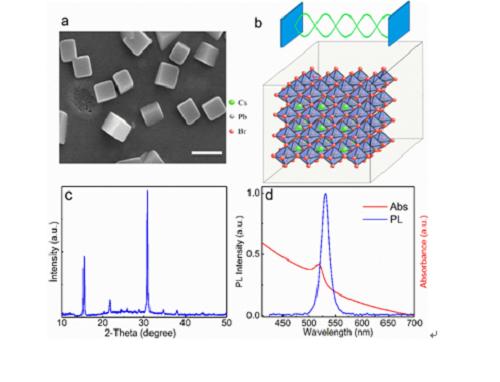 上海光机所成功研制最小尺寸的钙钛矿纳米激光器