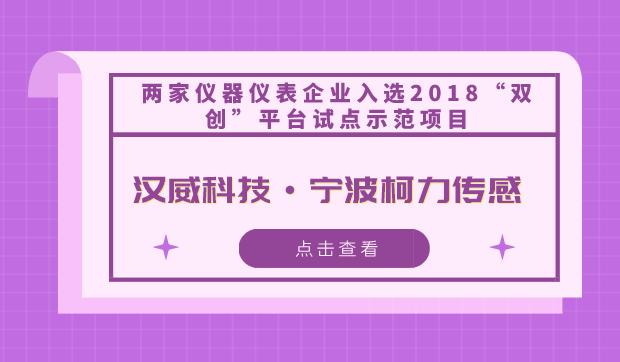"""兩家儀器儀表企業入選2018""""雙創""""平臺試點示范項目"""