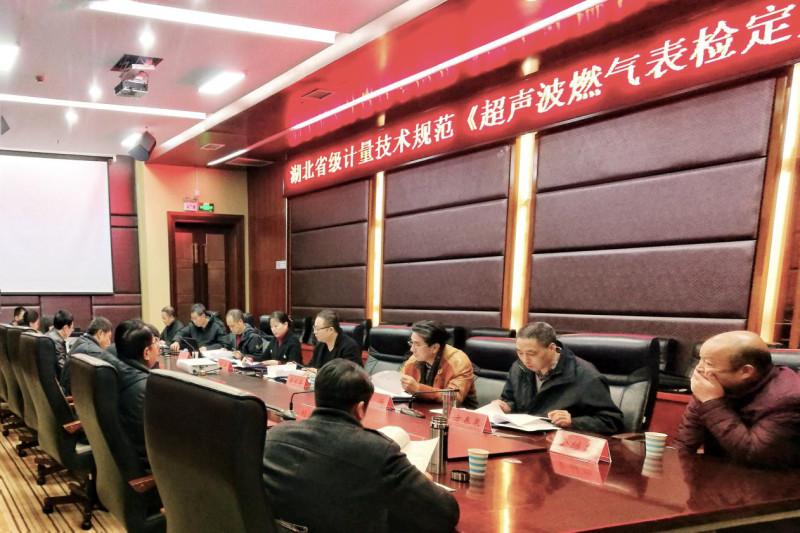 湖北省《超声波燃气表检定规程》顺利通过评审