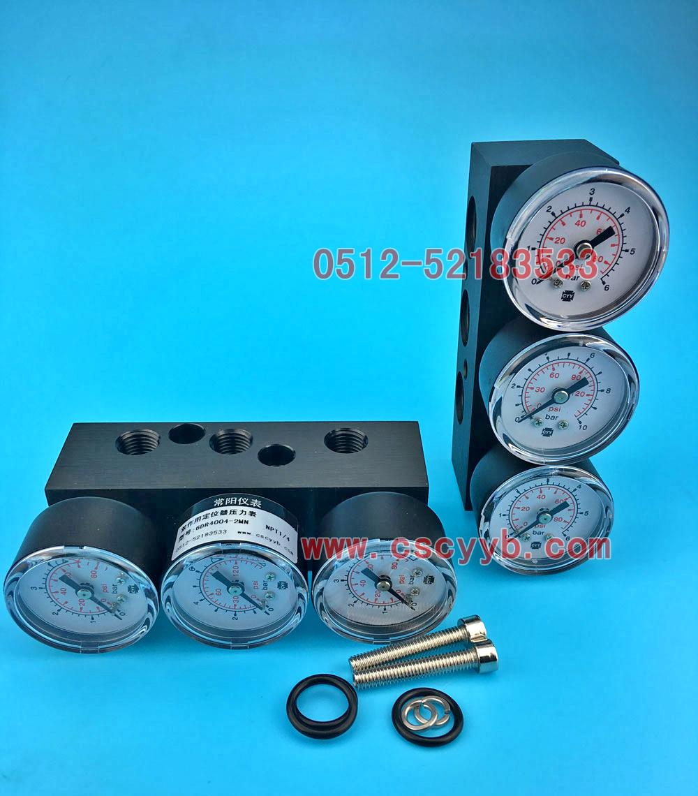 双作用压力表模块6DR4004-2M