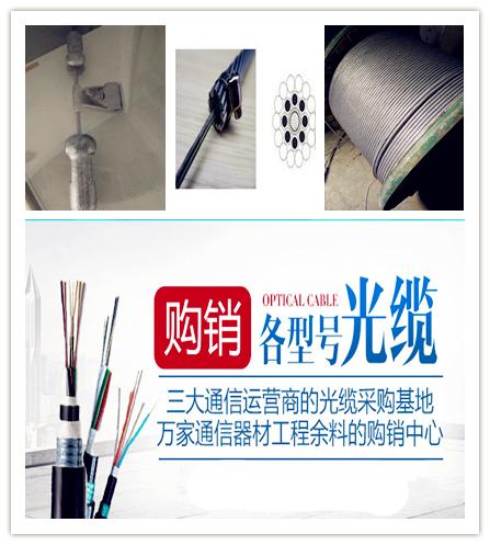 福建省厦门市GYTS单模铠装光缆GYTS-12B1价格