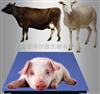 scs1吨 2吨 3吨 5吨称猪电子地磅秤价格